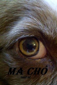 Ma Chó