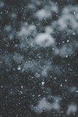 Truyện Tuyết Đầu Mùa
